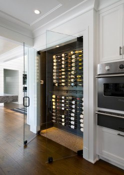 Handsome-Glass-Fridge-house-designs-Contemporary-Wine-Cellar-New-York